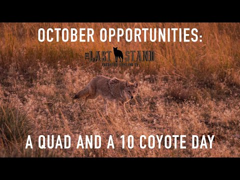 October Opportunities: A Quad and a 10 Coyote Day   The Last Stand S3:E4   Nebraska Coyote Hunting