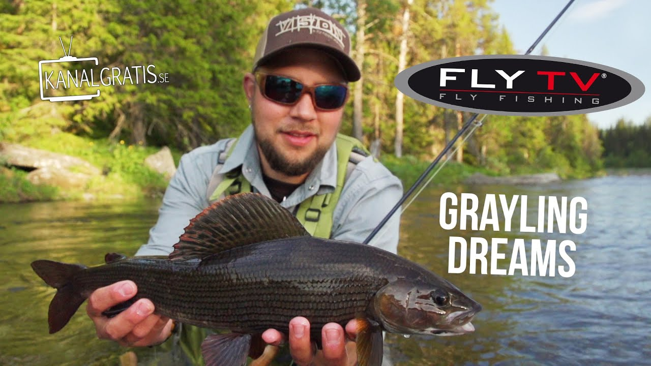 Fishing for grayling: features and technique of fishing 23