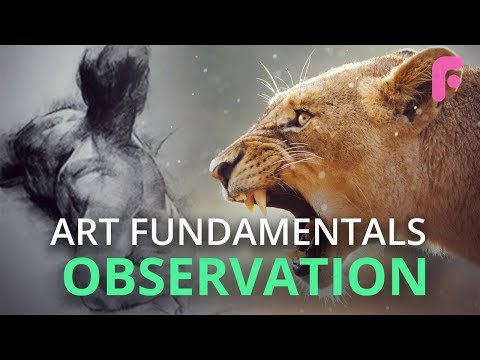 The Most Important Skill Nobody Taught You - Observation