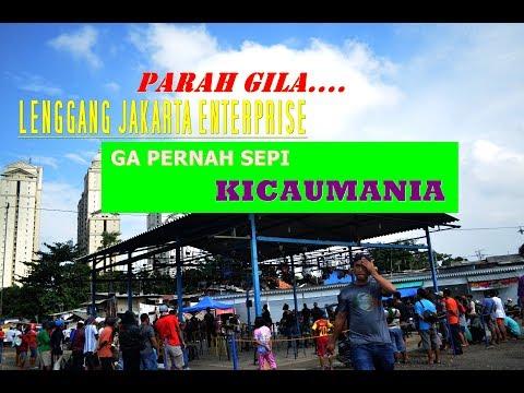 Lenggang Jakarta Enterprise Bersama Radjawali Indonesia