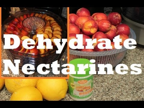How To Make Dehydrated Dried Nectarine Fruit With Waring Pro Food