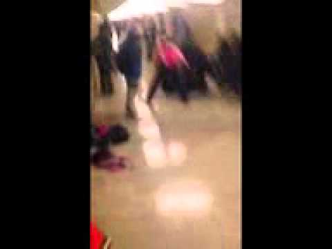 Morgan Park Fight