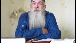 Владимир Гер - Иконы грех