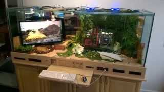 Gaming Pc Reptile Tank * I7 Pc * Built Into Desk * Gaming Mix * Tank Lizard Pc *