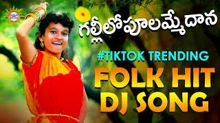 Gallilo Poolammedana Tiktok Trending Dj Folk Song  Latest Telangana Folk Dj Songs  DRC SUNIL SONGS