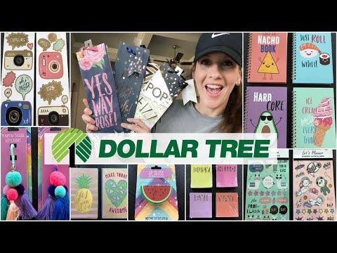 MASSIVE JACKPOT HAUL @ DOLLAR TREE *ALL NEW FINDS!