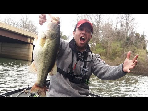 Early SPRING Potomac River Bass Fishing | DIRTY Water
