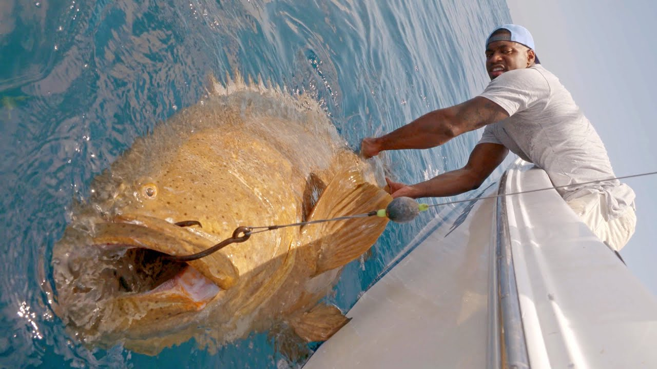 monster goliath groupers with nfl linebacker sam
