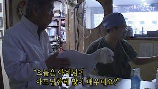 강아지는 40년 경력의 수의사 아버지보다 전문가! 시골의 초보 수의사 ④ KBS 인간극장 061109 방송