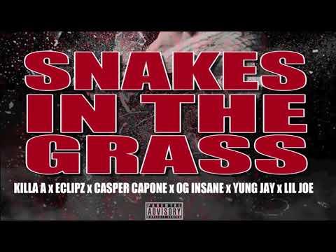 SNAKES IN THE GRASS -  KILLA A , ECLIPZ , CASPER CAPONE , OG INSANE , YUNG JAY , LIL JOE