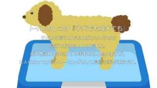 犬のしつけに困ったら… 犬のしつけお悩み.com situke-onayami.com トイ...