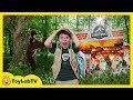 Dinosaur Surprise Toy Hunt & Adventure with Giant Prehistoric Bigfoot & Jurassic World Kids Toys