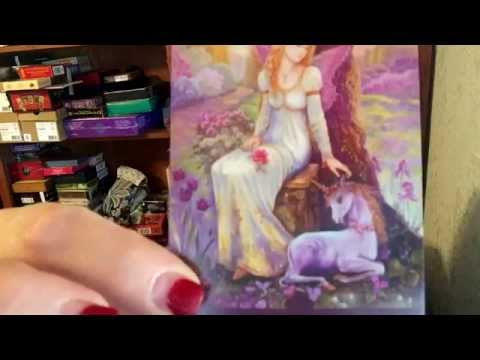 Arwen Reviews: The Inspirational Wisdom From Angels and Fairies (Unboxing)