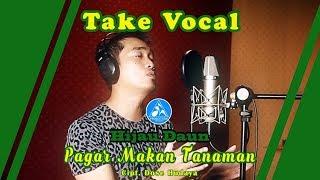 Video Hijau Daun Pagar Makan Tanaman [Take Vocal] download MP3, 3GP, MP4, WEBM, AVI, FLV Juli 2018