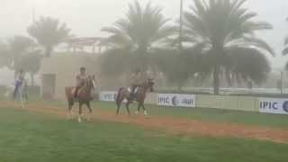 2nd World Military Championship Dubai (Promo)