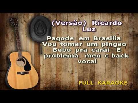 Karaokê Ricardo Luz   Pagode em Brasilia +  Vou tomar um pingao +  Bebo pra carai +  É problema meu