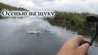 Рыбалка осенью на щуку