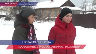 Врачам удалось стабилизировать состояние ребенка, на которого напала собака в Нижегородской области