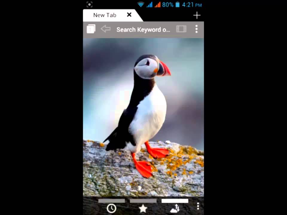 Watch and download android smart mobile phone puffin browser 2013 HD