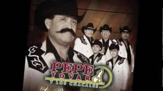 Pepe Tovar y Los Chacales - Piensa Morena thumbnail