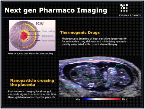 May 2014 Webinar - Imaging Guided Investigation in Cancer Drug Development