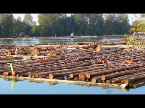 Men & tugs working log booms September 26, 2017