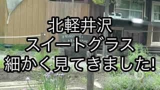 北軽井沢スイートグラス細かく見て来ました!