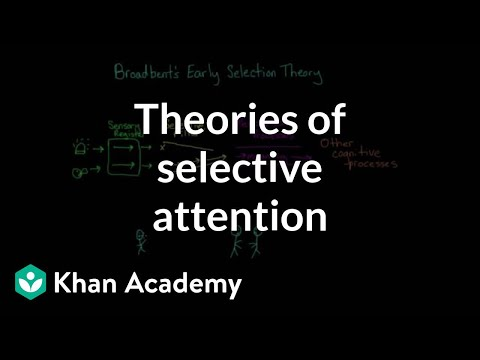 Theories of selective attention | Processing the Environment | MCAT | Khan Academy
