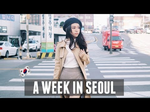 WHAT I DID IN KOREA   TRAVEL VLOG 2017