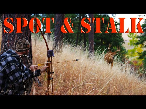 Recurve Bow Hunting – Public Land Bowhunting from the GROUND!