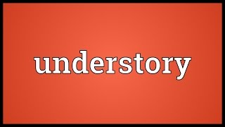 Understory Meaning