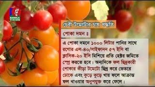 Shamol Bangla   Ep 537   কৃষিবিষয়ক অনুষ্ঠান শ্যামল বাংলা   Reza Islam   BanglaVision Program   2019