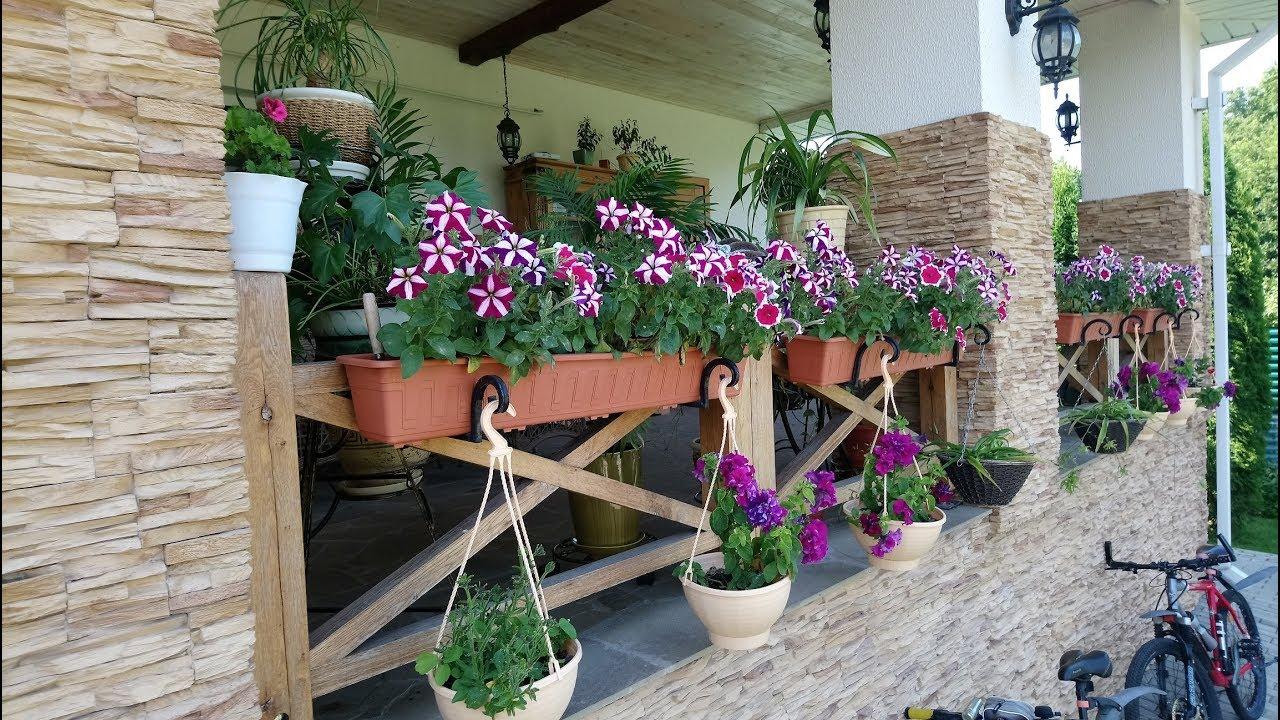 Какие цветы подходят для выращивание на улице в кашпо
