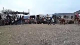 Jaripeo en cáracol bustamante tamaulipas