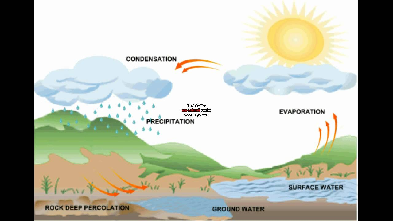 Water Cycle Song - YouTube