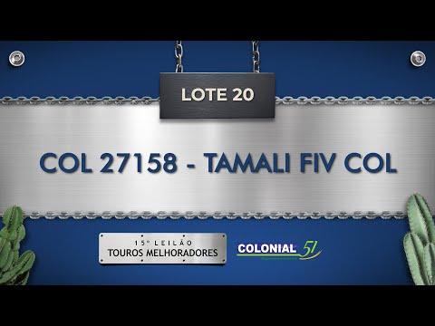 LOTE 20   COL 27158