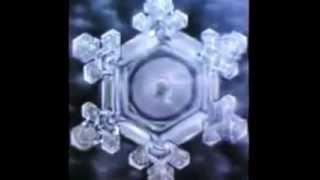 Masaru Emoto l'acqua assorbe le vibrazioni - sott. italiano