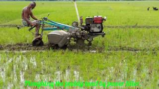 Ploughing the agricultural land by power tiller in Bangladesh