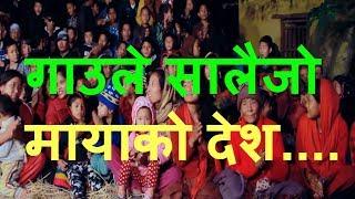 गाउले सालैजो मायाको देश | New Superhit Salaijo 2074 | By Ganga Pun & Niru Shreesh