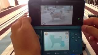 Nintendogs+cats avoir des points propriétaire