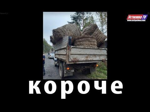 «Короче» – новости города Устюжны и Устюженского района №37 (137) от 02.10.2019