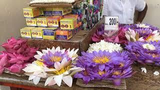 Канди|Что посмотреть в Канди Шри-Ланка|Храм зуба Будды