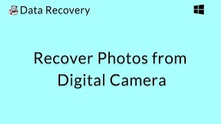 Data Recovery (Windows): Recover Deleted Photos from a Digital Camera