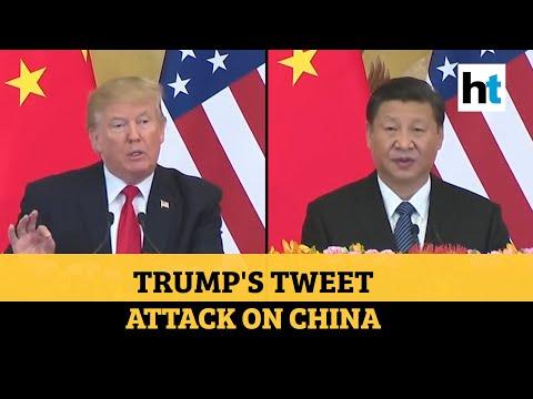 'Great damage to world': Trump slams China as US backs India amid face-off