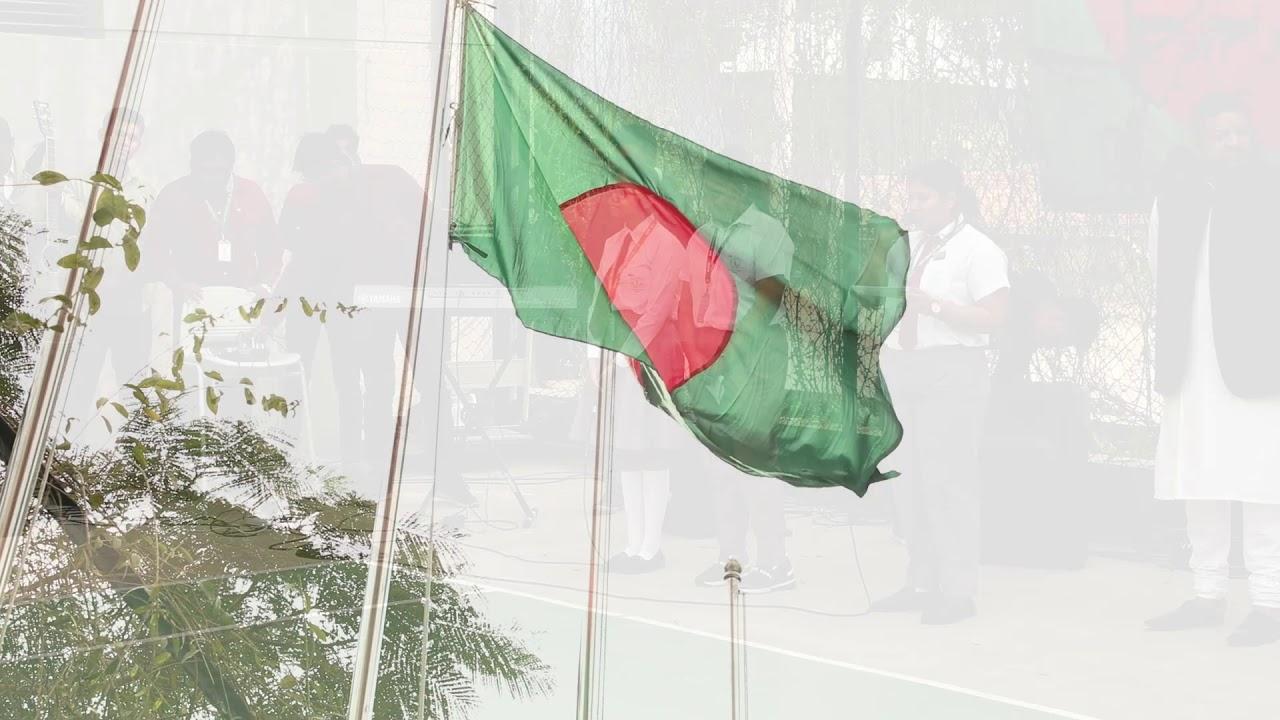 Bijoy Dibosh 2019 (Victory Day - DPS STS School Dhaka