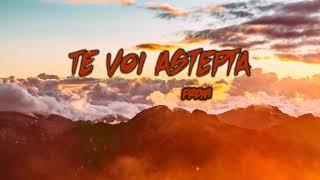 FRDM - Te voi astepta (Trevor Daniel - Falling Cover in romana)