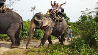 Катаемся на слонах и у мамы истерика