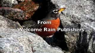 A Lightness, A Thirst, Or Nothing At All Book Trailer