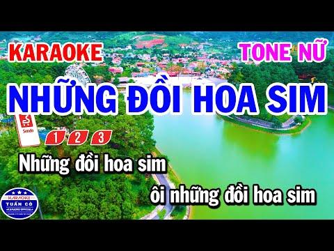Download Karaoke Những Đồi Hoa Sim Tone Nữ Nhạc Sống Rumba