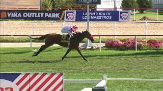 Vidéo de la course PMU PREMIO HABANO
